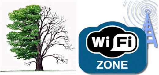деревья и Wi-Fi